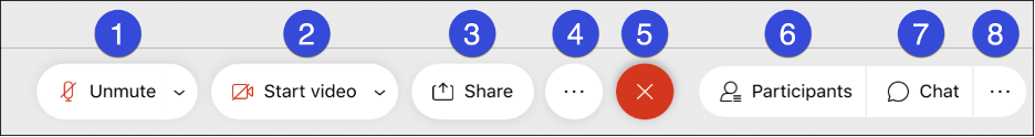 Screenshot highlighting the WebEx meeting controls, Mute, Start Video, Share Content, Participants, Chats, More Options and Leave Meeting.