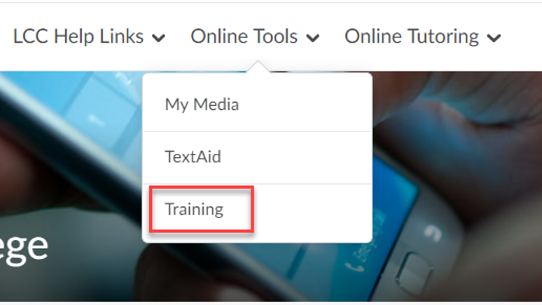 Selecting Training from the Online Tools menu of the D2L homepage.