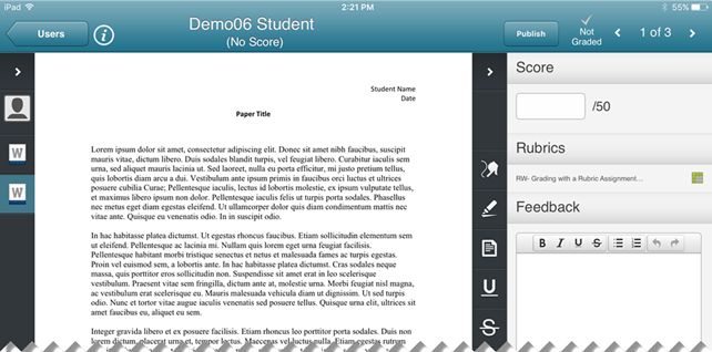 Screenshot of the selected student assignment to be graded.