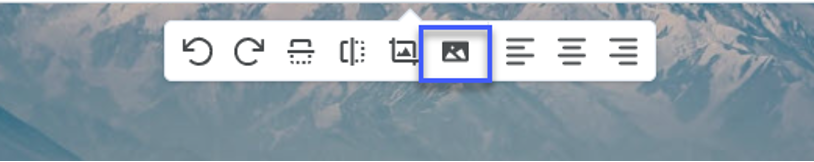 Image Options icon.