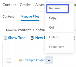Select the drop-down menu for the file or folder, then select Rename.