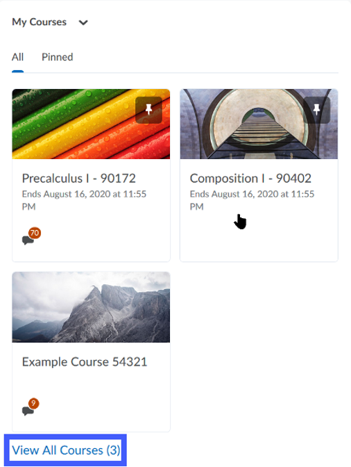 Screenshot of example courses with View All Courses link highlighted.