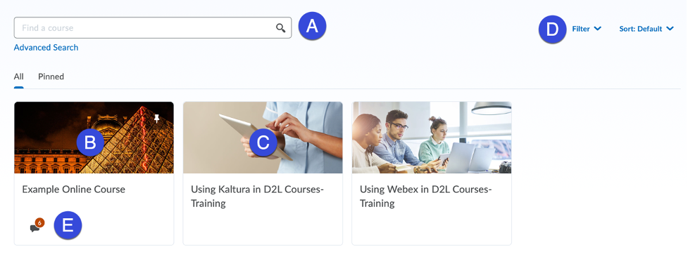 Screenshot of example of available courses to pin.