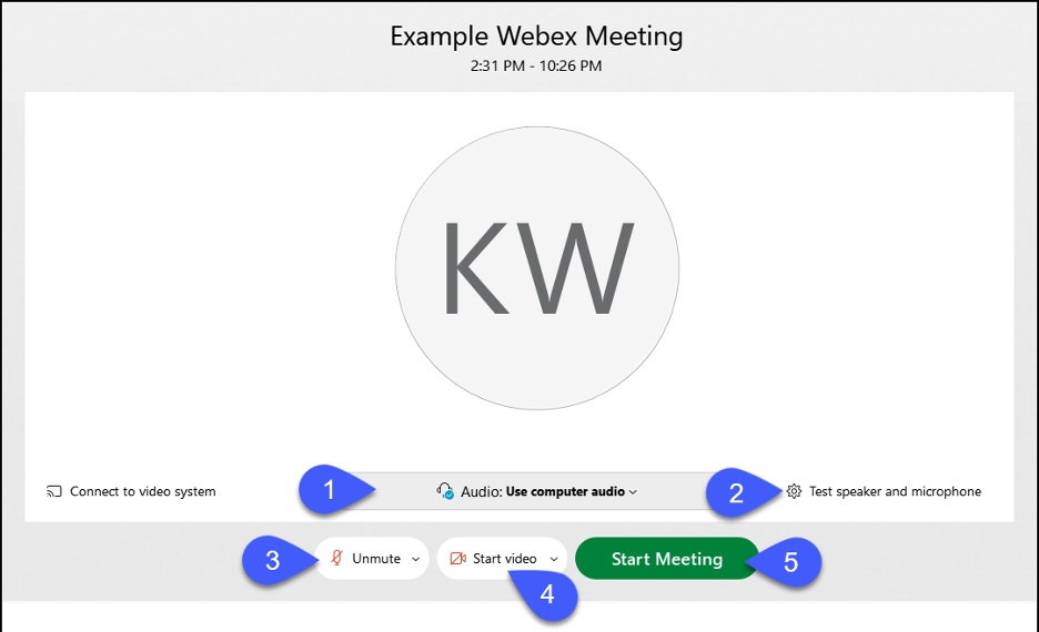 Webex Meeting Launch page, highlighting the different launch options, such as mute, webcam and start meeting.