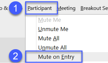 Muting participants upon entry of meeting.