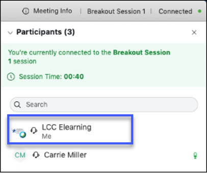 One group member is designated as the presenter in breakout sessions as identified by the Webex icon.